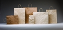 Picture of Carry Bag Brown Paper Twist Handle 500 x 450 + 125 Large 110gsm-CARB063620- (SLV-50)