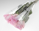 Picture of Plastic Flower Sleeves Clear 35cm x 18cm x 6cm-WRAP074305- (SLV-50)