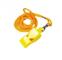 Picture of Coloured Plastic Whistle with String-MISC232335- (EA)